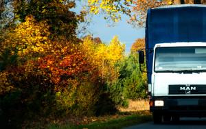 Sytuacja transportu drogowego w Polsce-mra